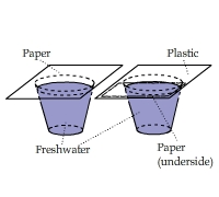 arrest water percolate water essay Read this essay on water filtration a water filter is designed to remove impurities from water using a small physical barrier or a chemical process.